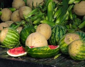 cornandmelonsweb