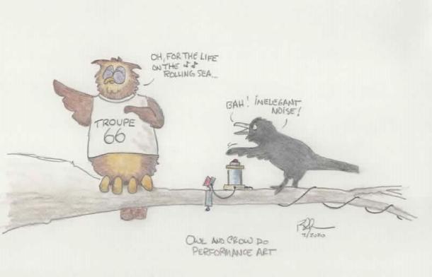 owlcrow